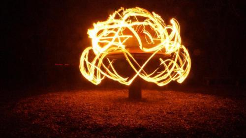 rover Feuer Pilz